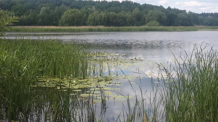 Ічнянський національний природний парк.