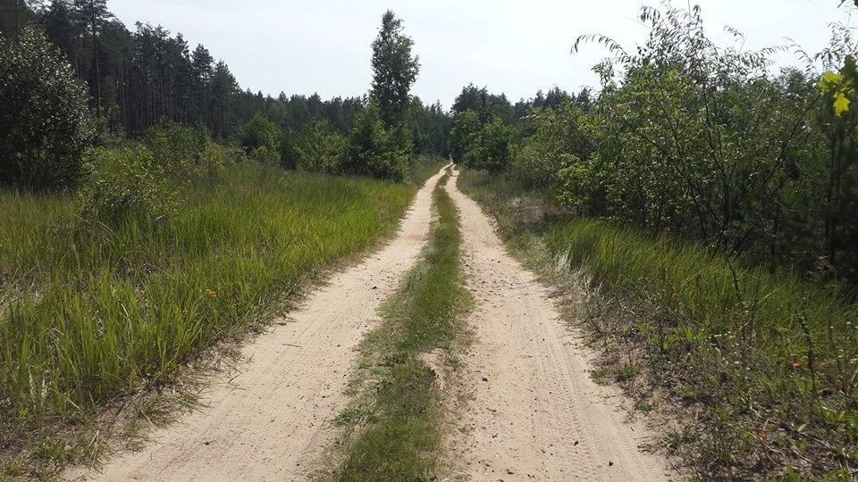Торная дорога